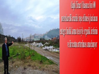 ALAPLI'YA ORGANİK FINDIK FABRİKASI